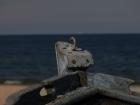 2011-09-02-15-19h-zinnowitz-urlaub-nicolle-christian-182